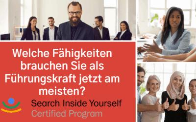 Coaching für Führungskräfte und Team – SIY Training